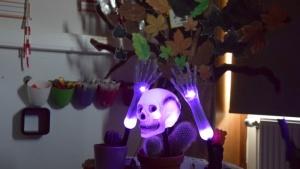 Halloween bij Leer deel 2
