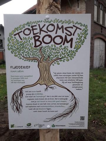 Oudste leerlingen planten een toekomstboom